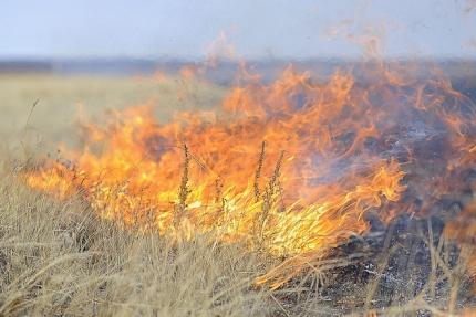 Год огненного петуха:  Два пожара в один день