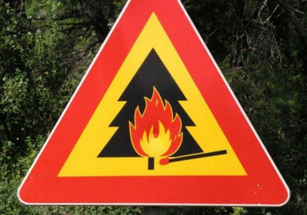 Контроль пожарной обстановки в лесах усилен