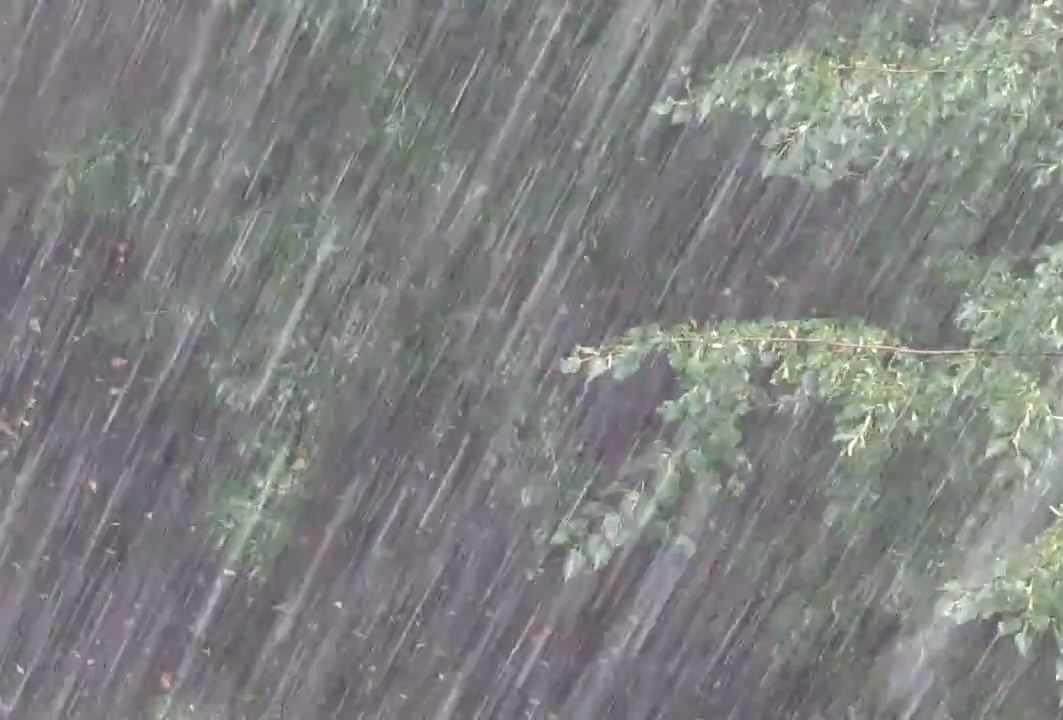 Сегодня — дождь, местами сильный