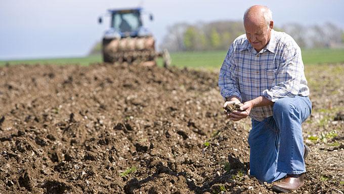 Фермерам земли можно взять больше
