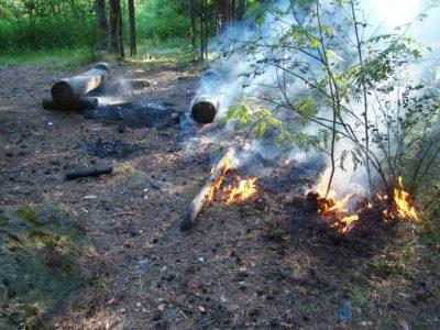 В лесу — пожарная опасность