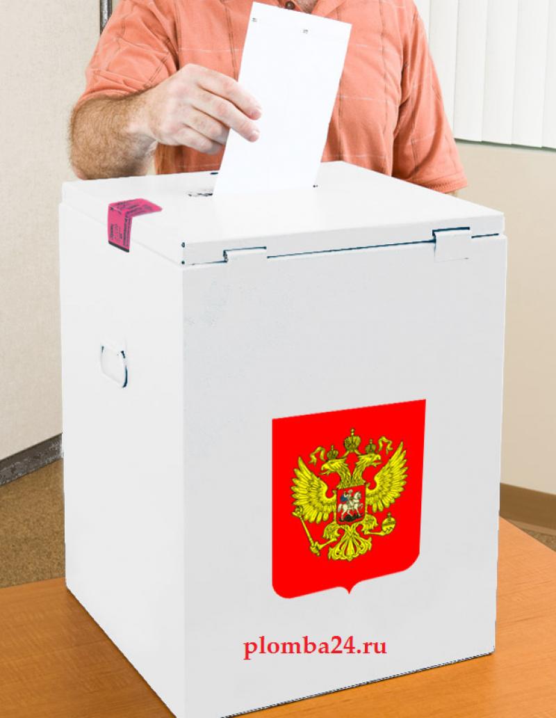 Облизбирком: итоговые протоколы с избирательных участков Мантурово по просьбе наблюдателей распечатаны повторно