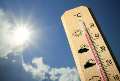 До конца текущей недели в Костромской области прогнозируется аномально жаркая погода