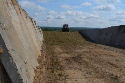 В «Междуречье» заготовлено более двух тысяч тонн силоса