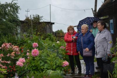 Активное долголетие: Ветеранский цветник