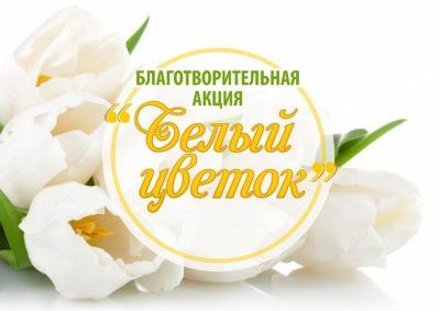 «Белый цветок»