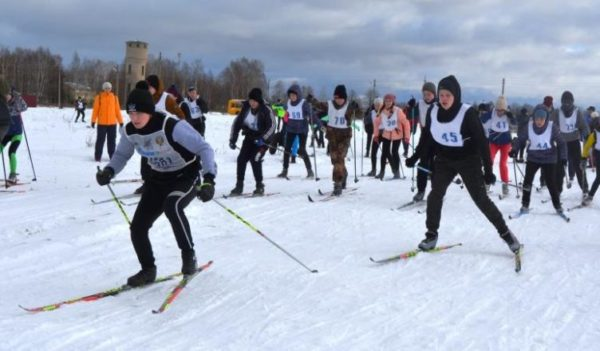Спорт для всех:  Не ленись — на лыжи становись!