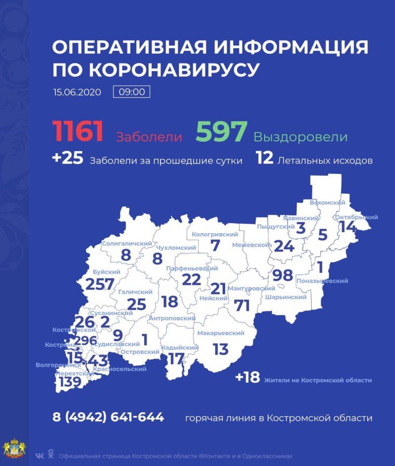 За сутки в Костромской области коронавирус подтвержден у 25 человек