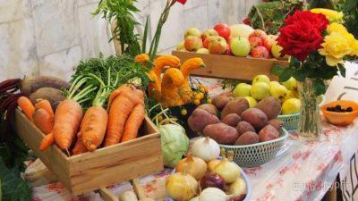 Мантуровцев приглашают на традиционные сельскохозяйственные ярмарки