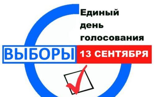 Выборы 2020: Все заявки по голосованию вне участков будут удовлетворены