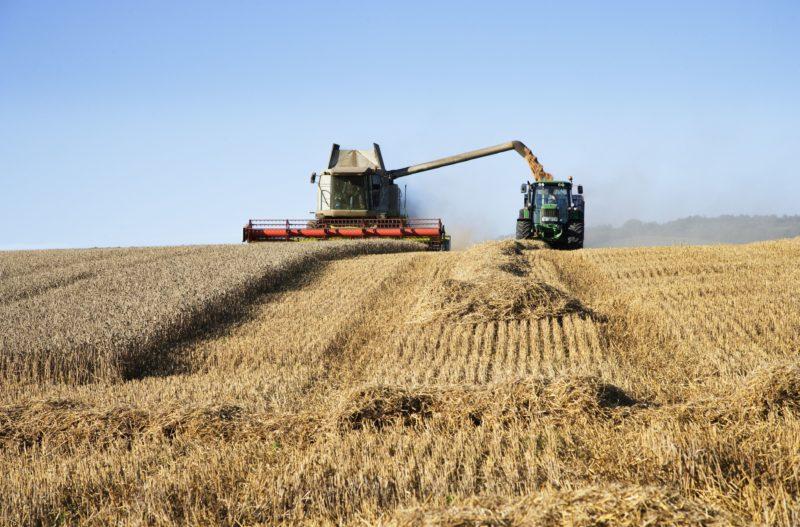 Как дела, АПК? Убрать зерновые к 1 октября