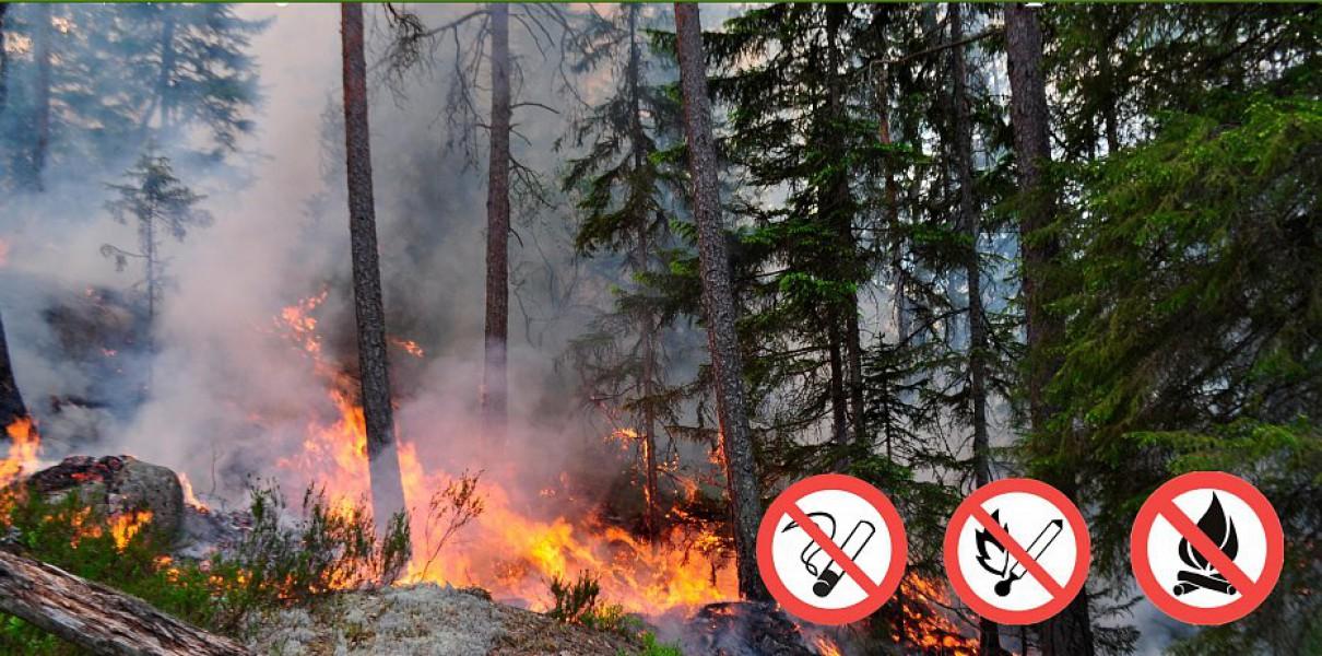 Жителям региона рекомендуют строго соблюдать правила пожарной безопасности