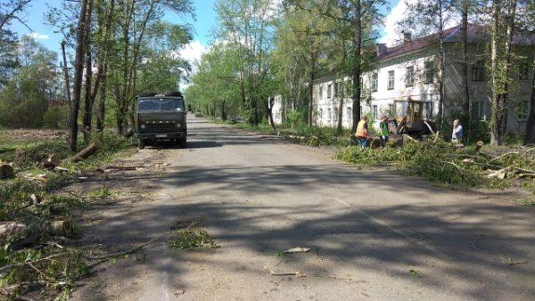 В городском округе город Мантурово в понедельник будут работать все учреждения социальной сферы