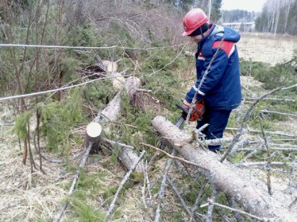 Оперативным штабом энергетиков принято решение направить в Костромскую область дополнительные бригады из других регионов