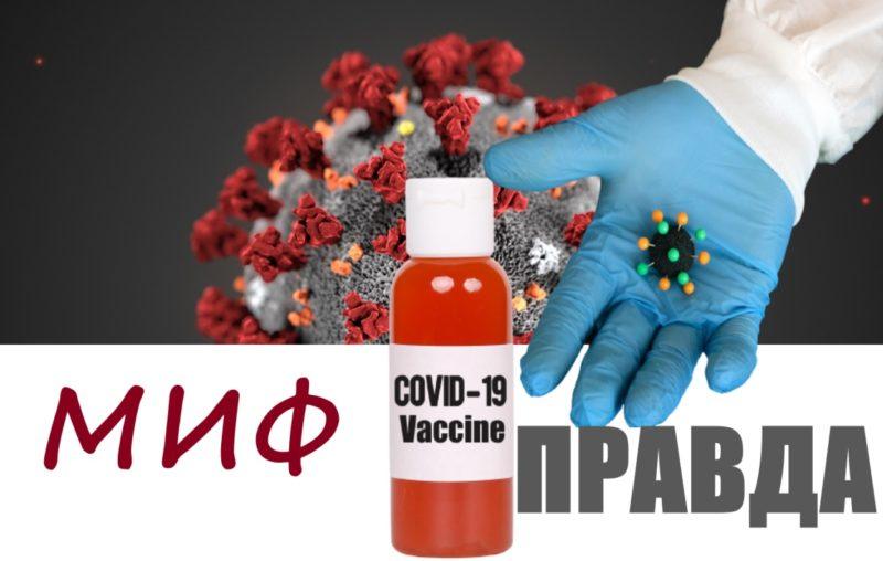 Ваше здоровье: Не бойтесь прививки!
