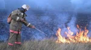 Лесной пожар в Мантуровском районе оперативно локализован